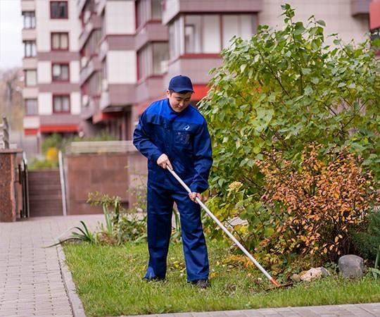 Уборка территории в Люберцах и Московской области